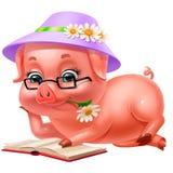 Милый розовый поросенок в шляпе читая изолированную книгу, на белизне Стоковые Изображения