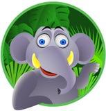 милый слон Стоковая Фотография