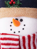 милый снеговик Стоковая Фотография