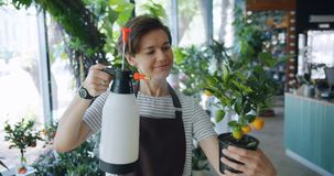 Милый флорист дамы моча экзотический завод в усмехаться спринклера удерживания бака сток-видео