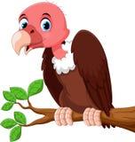 Милый шарж птицы хищника на ветви дерева Стоковое Изображение
