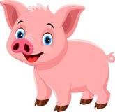 Милый шарж свиньи изолированный на белой предпосылке Стоковые Изображения RF
