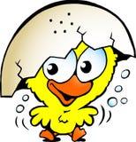 Милый excited цыпленок младенца Стоковая Фотография