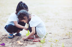 2 милых азиатских девушки маленьких ребенка имея потеху, который нужно сыграть с песком Стоковые Фотографии RF