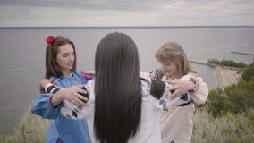 3 милых девушки нося длинное платье моды лета на поле на фоне озера или реки 2 видеоматериал