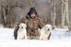 2 милых желтых labradors в зиме в портрете снега Стоковое Фото