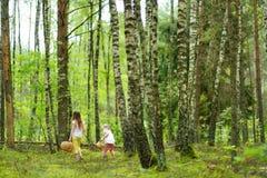 2 милых маленьких сестры имея потеху во время похода леса на красивый летний день Активный отдых семьи с детьми стоковое изображение rf