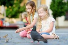 2 милых маленьких сестры подавая птицы на летний день Дети подавая голуби и воробьи outdoors Стоковая Фотография