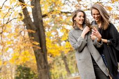 2 милых молодой женщины используя мобильный телефон в лесе осени Стоковые Изображения RF