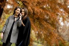 2 милых молодой женщины используя мобильный телефон в лесе осени Стоковая Фотография