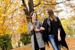 2 милых молодой женщины используя мобильный телефон в лесе осени Стоковое Изображение