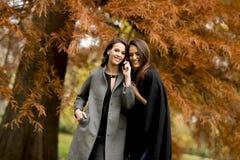 2 милых молодой женщины используя мобильный телефон в лесе осени Стоковые Фотографии RF