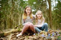 2 милых молодых сестры имея потеху во время похода леса на красивый предыдущий весенний день Активный отдых семьи с детьми стоковые фото