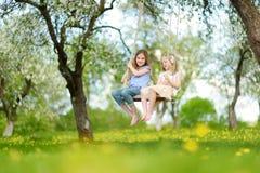 2 милых сестры имея потеху на качании в blossoming старом саде яблони outdoors на солнечный весенний день стоковое изображение rf