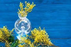 Мимоза на деревянной предпосылке в стеклянной насмешке вазы вверх Стоковое Изображение RF