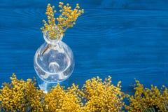 Мимоза на деревянной предпосылке в стеклянной насмешке вазы вверх Стоковые Изображения RF