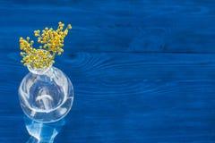 Мимоза на деревянной предпосылке в стеклянной насмешке вазы вверх Стоковое фото RF