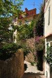 Мимозы les Bormes, Франция - 18-ое апреля 2016: живописная старая Стоковые Изображения