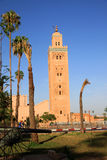 минарет marrakesh Стоковая Фотография