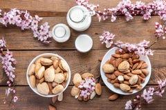 миндалины, цветки миндалины и молоко миндалины стоковое изображение rf