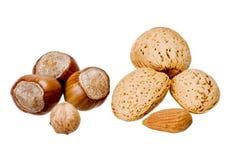 миндалины nuts Стоковые Фотографии RF