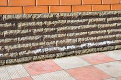 Минеральная эфлоресценция Середина эфлоресценции как индикатор проблем влаги в жилищных строительствах Белые соли эфлоресценции стоковое изображение rf