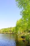минерал озера Стоковое Изображение RF