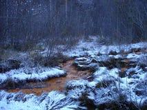 Минеральная весна в зиме Стоковые Изображения