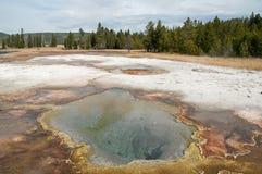 Минеральный бассейн Стоковая Фотография