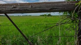Минесота - загородка фермы сток-видео