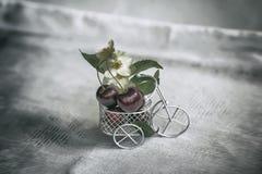Миниатюрная магазинная тележкаа игрушки, крупный план вагонетки с зрелой вишней, цветками, винтажной предпосылкой Концепция земле Стоковые Изображения