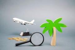 Миниатюрная пальма и самолет игрушки Концепция планировать каникулы лета или зимы Путешествия остатков семьи горячие ищут стоковое фото rf