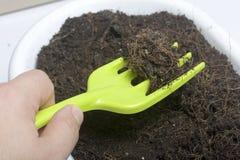 Миниатюрные инструменты для floriculture Малые вилки для культивировать землю в цветочных горшках Стоковая Фотография RF
