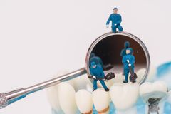 Миниатюрные люди используют зуб зубоврачебного инструмента чистый или зубоврачебную модель стоковые фото