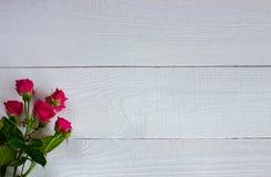 Миниатюрные розы на белых досках стоковые изображения rf