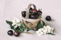 Миниатюрный крупный план корзины игрушки с зрелой вишней, цветками, винтажной предпосылкой Концепция здоровой еды, вытрезвителя,  Стоковое Изображение RF