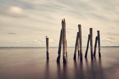 Минималистский ландшафт моря, неба и волнореза, Балтийское море Стоковое Изображение RF