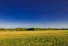 Минимальный сельский ландшафт во время захода солнца Стоковые Изображения