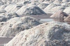 Минирование соли в Индии Стоковое Изображение RF