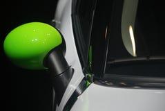 Мини бондарь зеленого цвета соотечественника стоковое фото