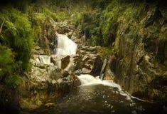 Мини водопад с влажными утесами мха Стоковая Фотография