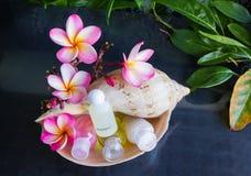 Мини комплект жемчужной ванны и ливень gel в раковине раковины моря Стоковое фото RF