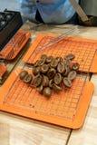 Мини образец плюшки кофейного зерна с вкусом кофе для испытания по я Стоковые Фотографии RF