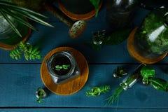 Мини стеклянные вазы и бутылка с зелеными листьями, заводами Стоковое Изображение RF