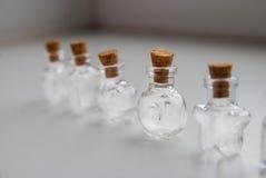 Мини формы стеклянных бутылок различные с затвором пробочки на белой предпосылке Стоковое фото RF