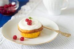 Мини чизкейк с взбитой cream и красной смородиной Деревенский тип стоковые фото