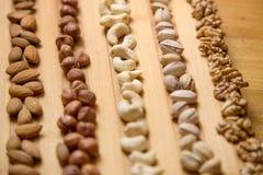 Миндалины, грецкие орехи и фундуки Стоковые Изображения RF