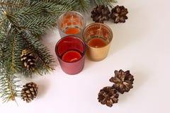 миражирует рождественскую елку стоковое изображение rf