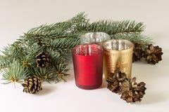 миражирует рождественскую елку стоковое фото
