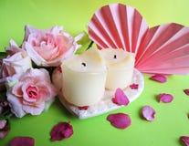 миражирует розы Стоковое Фото